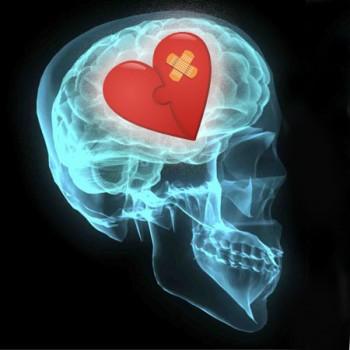 6 brain heart e1435759142444 Get Your Ex Back   Part 1